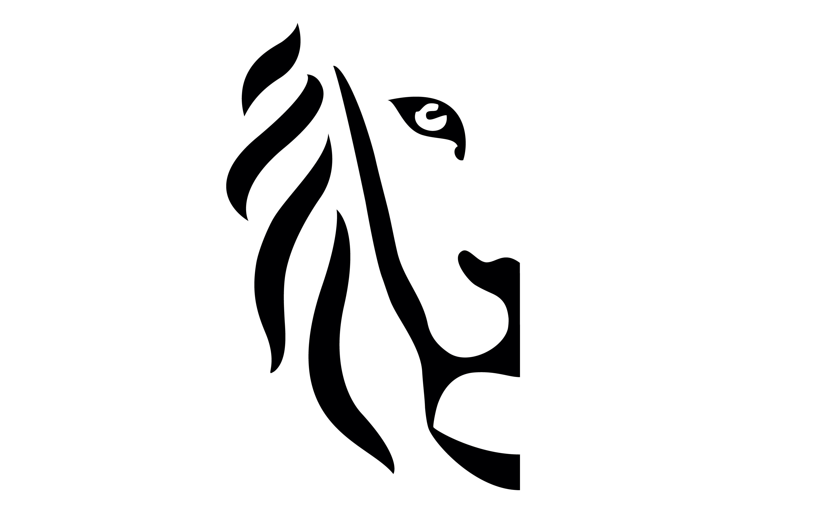 Leeuw Vlaanderen